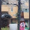 ビール備忘録 その48 〜2020年、桜ビール特集〜