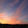 5月21日(土)晴れのち曇り