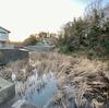 中沢向原貯留池(旧貝柄山貯留池)(千葉県鎌ヶ谷)