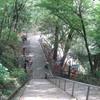 勝俣部長の「高尾登山と健康体質作り」650・・・・真夏の 世の 夢