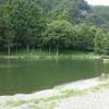 Fish Park in 鹿留