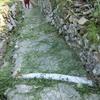 久方ぶりの汗そして緑の絨毯