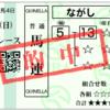 【競馬予想】BSN賞