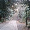 赤坂氷川神社を下見