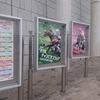 競馬予想!11/10日曜日の大根おろしの推奨馬