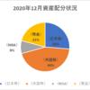 【資産状況】【配当の軌跡】2020年12月の総資産は563万円!
