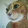 【うちの猫さん】きれいな絵を描いていただきました!~飼い主感激~と空振りの日。