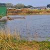 牡丹池(福島県矢吹)