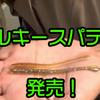 【一誠】村上晴彦プロ監修のセコ釣りに最適なストレートワーム「海太郎 バルキースパテラ 2.8inch」発売!