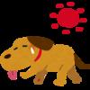 3-133   犬だって、熱中症に御用心