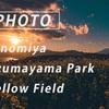 吾妻山公園から夕方の富士山と菜の花畑:Sony α7c + SEL135F18GM, SEL24F14GM