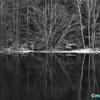 暖冬の「御射鹿池」と「霧降の滝」