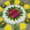 【भारत】Happy Diwali@Rangoli/ディワリ祭り@フラワーランゴリ(※動画あり)