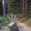 パラダイスバレー(A13)のハイキングー渓谷歩きと景観が楽しめるロングコース
