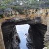 タスマン半島 と 危険なドライブ in Tasmania