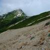 燕岳・餓鬼岳の花々(2)              2009.8.11-14