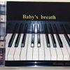 【シマレコ】Baby's breath「Everlasting Love」入荷しました!
