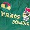2019football観戦記#4:キリンチャレンジカップ 日本ーボリビア