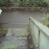 Photo No.368 / 傘、ゆれる
