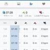 【朝ラン】ジョグ30分+WS3本/今週の練習メニュー