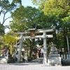 京都 青モミジの鳩の三宅八幡宮