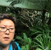 熱帯環境植物館の館内を撮影します。