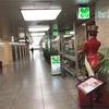 緊急事態宣言後の初めての土曜日の梅田、そして駅前第一ビルの喫茶マズラ