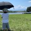 葛西臨海公園でマグロを見て磯遊びとコスパよく夏を満喫するプラン