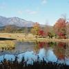 日光市の「だいや川公園」に紅葉を求め行ってきました。