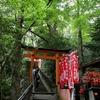 京都)東福寺(青もみじ)→京都トレイルコース→伏見稲荷。