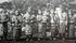 アイヌ (2) - 歴史修正主義との闘い - 「色丹島へのアイヌの強制移住は強制ではなかった」というデマ