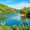 中山池(京都府亀岡)