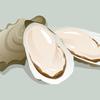 牡蠣サプリにはタウリンも多い?タウリン含有量はどのくらい?