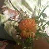 お花と緑で運気アップの話