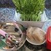 お昼はヘルシーが基本。今日は野菜サラダ風ビビンバです。