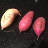 英語で芋の話をするときの言葉いろいろ & Sweet Potatoes食べくらべ