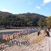 京都滋賀旅行1日目前半、嵐山に来て観光都市京都のポテンシャルの高さに驚いた。