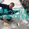 〈沖縄県〉西表島への行き方!交通手段や料金は?西表島でできることとは?