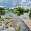 よしま池(静岡県富士宮)