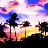 【絶対外さないハワイ土産】カハラホテルのマカダミアナッツにTHE ROASTで焙煎したブラジル・サンアントニオ・ナッティブレイクを合わせる