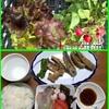 レンタルプチ農園で家庭菜園を始めました-15。