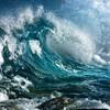 波には乗らないカメであるために