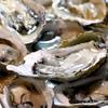 絶対食べないぞ牡蠣