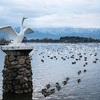 咲花温泉と合わせて行きたい周辺おすすめ観光スポット3選!〜新潟を楽しむブログ〜