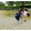 先日、子供のお友達が遊びに来た話(^^)鳥小屋を作って遊んだよ