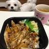 500円の海鮮丼!「丼丸」のお弁当!