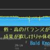 Bald Knob -2  : 成果を求めるなら休息大事。疲労が溜まればSST.だって高強度になる。
