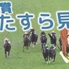 【日本ダービー検討】皐月賞の映像とパトロールビデオを95回ずつ見て振り返ってみた