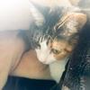 【愛猫日記】毎日アンヌさん#132