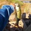 借りた釣具で釣る男
